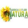 Sc Fabrica De Flori Natura Srl