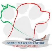 Infinite Marketing Group Srl