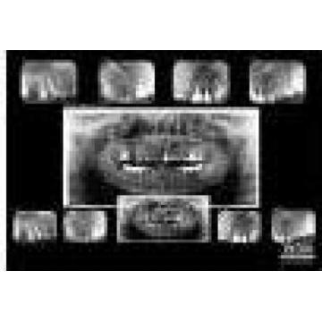 Petra Laboratory - Centrul De Radiologie Digitala Stomatolog
