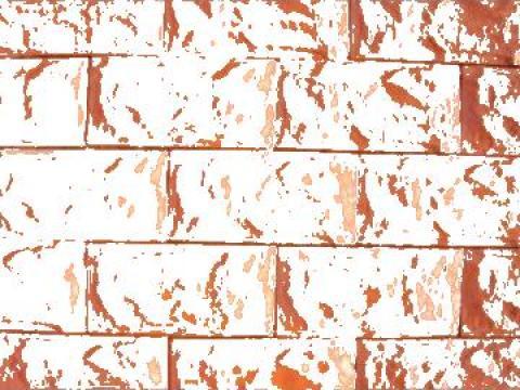 Piatra pentru placare garduri, socluri, fatade de la Pavele Vibropresate SRL