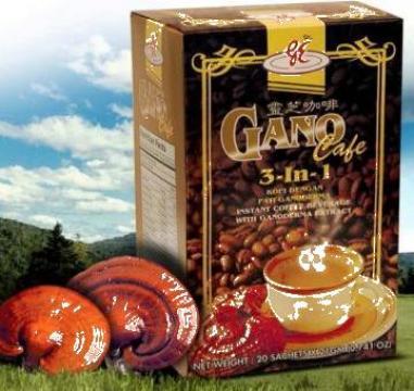 Cafea Gano cafe 3 in 1 Ganoderma Lucidum de la Net Market Srl.