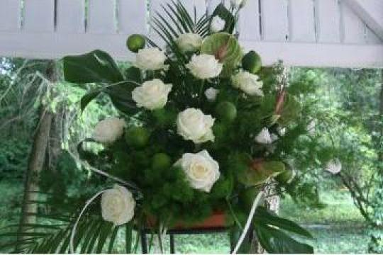 Decorare, amenajare, sala nunta, botez, zi onomastica de la Floralis