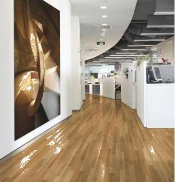linoleum pvc targoviste sc tuana invest srl id 394707. Black Bedroom Furniture Sets. Home Design Ideas