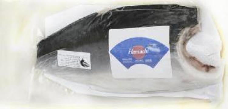 Peste File yellowtail kingfish (hamachi) congelat de la Expert Factor Foods Srl
