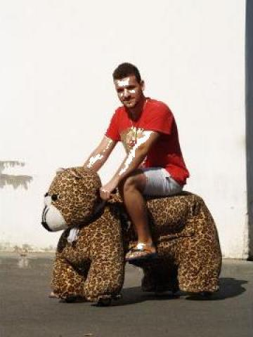 Jucarie elecrica kiddie rider animals