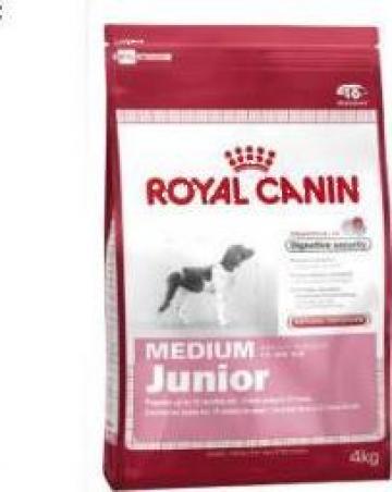 hrana caini royal canin medium junior bucuresti meltom com srl id 3254007. Black Bedroom Furniture Sets. Home Design Ideas