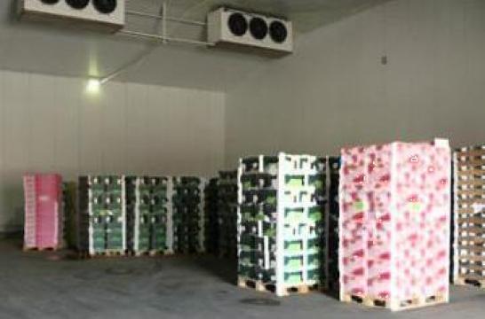 Camere, depozite frigorifice pentru legume fructe de la Amadi & Co Comimpex Srl