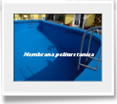 Membrana poliuretanica lichida Hyperdesmo de la Professional Woaterprooting