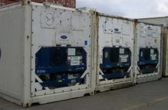Containere frigorifice Magnum