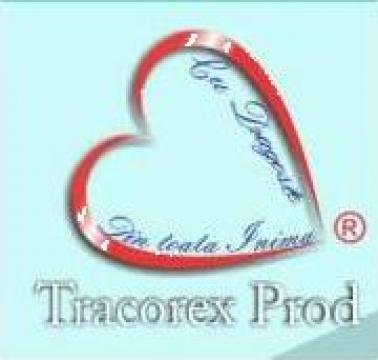 Coperti vocabular de la Tracorex Prod SRL