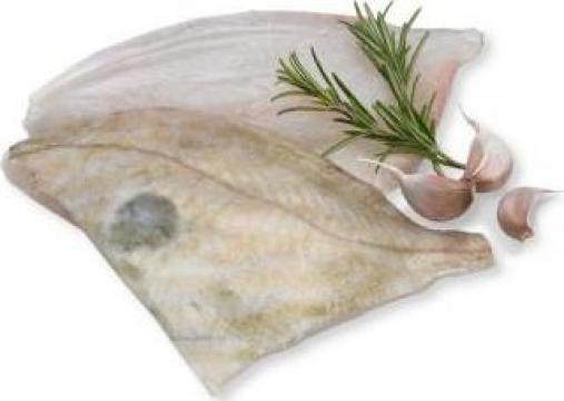 File congelat John Dorry de la Expert Factor Foods Srl