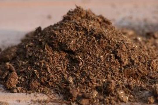 Absorbant natural biodegradabil pt hidrocarburi