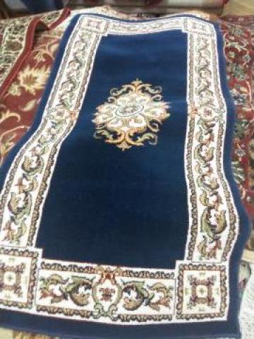 Carpeta Cisnadie 13