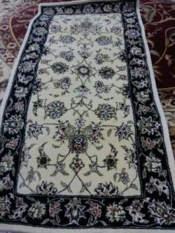 Carpeta Cisnadie 26