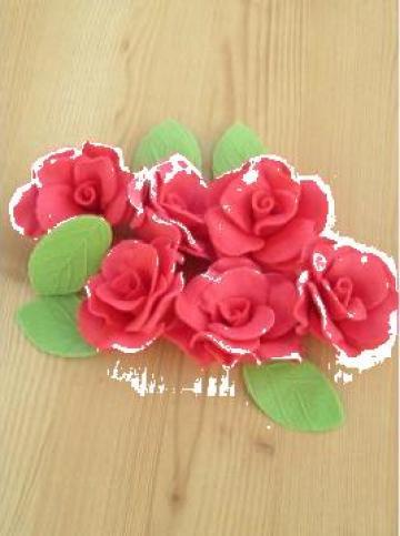 Set decor prajituri trandafiri mari de la Tat Agrovest Srl