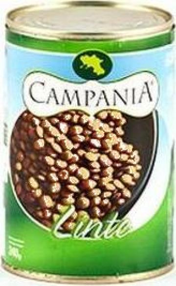 Conserva linte verde Campania de la S.c. Italin Gross Impex S.r.l.