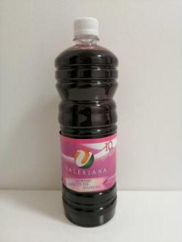 Sirop pentru granita 1 litru fructe de padure de la Cristian Food Industry Srl.