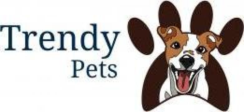 Servicii frizerie canina, tuns caini de la Trendy Pets
