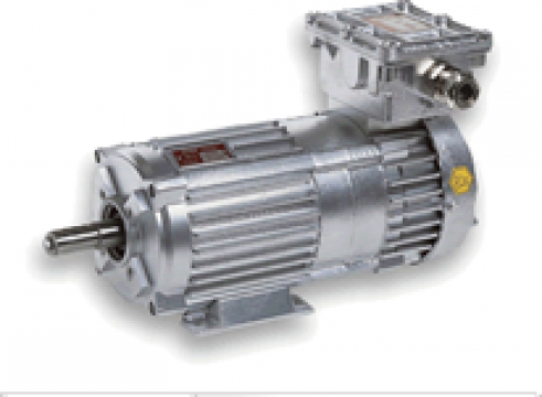 Motoare antiex in constructie antiexploziva cu frana de la Electrofrane
