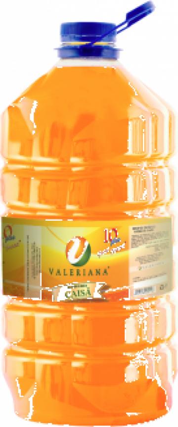 Sirop pentru granita 5 litri caise de la Cristian Food Industry Srl.