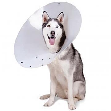 Gulere protectie animale de companie, M - L: 15cm, D: