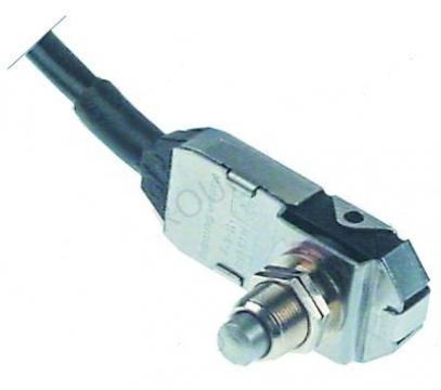 Microintrerupator cu piston 1CO, 4A, 250V, filet M12 de la Kalva Solutions Srl