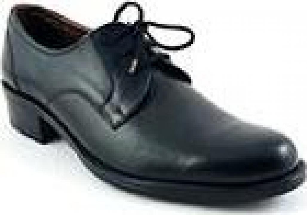Pantofi cadre dama 208 TC