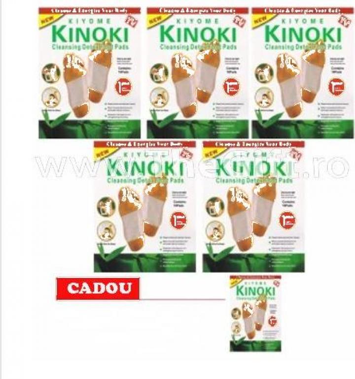 Set 5 cutii plasturi kinoki pentru detoxifiere, 60 buc.